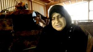عاملة كادحة في مدينة الديوانية تروي قصة 35 سنة من العمل الشاق في صنلعة الطابوق